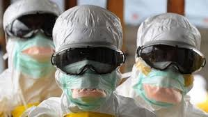 В Европе зарегистрирован первый случай вируса Зика у беременной