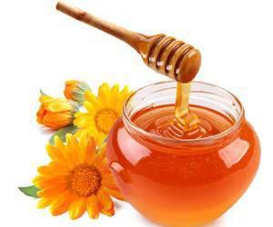Болезни почек: народные рецепты лечения медом