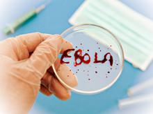 Эпидемиологи: еще рано говорить об избавлении от вируса Эбола