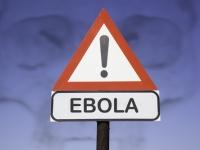 ВОЗ: распространение вируса лихорадки Эбола прекращено в Гвинее