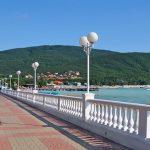 На Черном море борются против угрозы вируса Зика