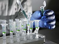 Эксперты исследовали состав генома современных россиян