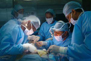 Трансплантация сложных органов давно умерших людей стала возможной
