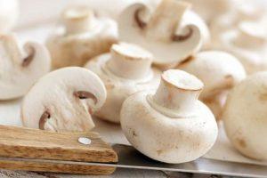 В грибах обнаружили мощное антираковое вещество