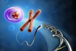 Томские ученые исследуют новый метод диагностики хромосомных аномалий эмбрионов