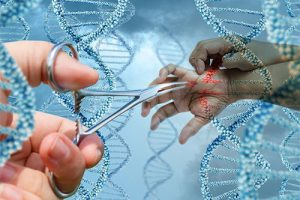 Австралийцы вылечат аллергию генной терапией