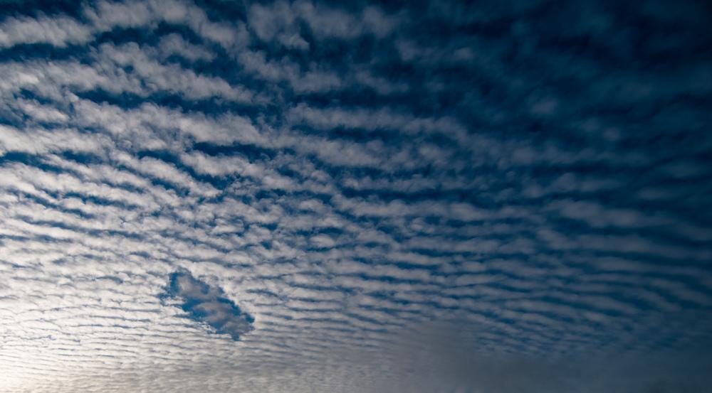 Низкий уровень озона повышает уровень преждевременной смертности