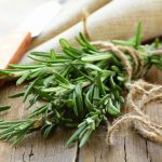 Это растение улучшает память на 75% и предотвращает болезнь Альцгеймера