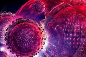 Кошельки — разносчики опасных бактерий