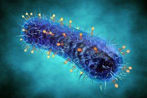 Генномодифицированная микробиота способна улучшить иммунитет