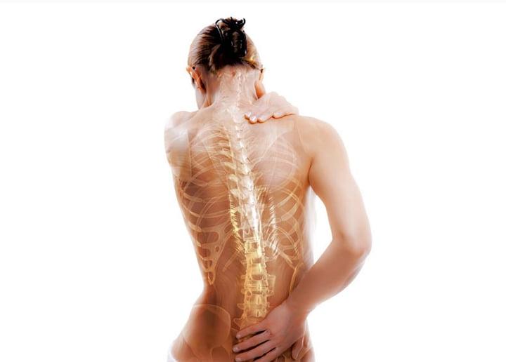 Гормон роста эффективен при остеопорозе в климактерическом периоде