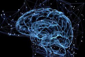 Противораковый вирус впервые проник в мозг через кровь