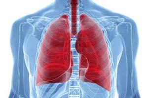 Симптомы эхинококкоза лёгких