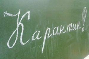 Карантин по ОРВИ удлинит весенние каникулы саратовских школьников