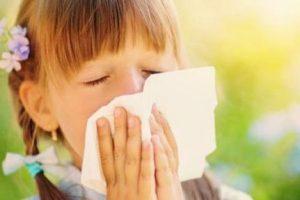 Поллиноз – красный нос. Что нужно знать о сезонной аллергии