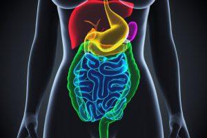 Микробиом кишечника меняется при воспалениях