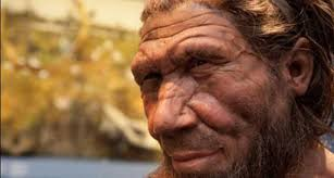 Исследование: современный человек унаследовал от неандертальцев гены борьбы с ВИЧ, гриппом и гепатитом