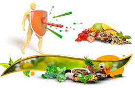 Пять главных загадок человеческого иммунитета