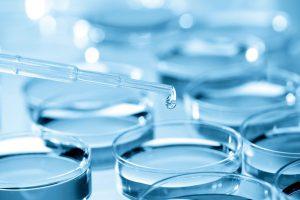 Петербургские ученые разработали антибиотик на основе антимикробных пептидов