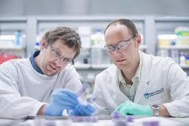 Комбинация лекарств позволит быстро побороть гепатит С