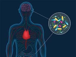 Удаление аппендицита связали с риском болезни Паркинсона