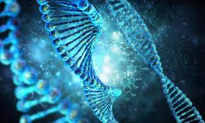 Правкомиссия одобрила законопроект об обработке генетических данных