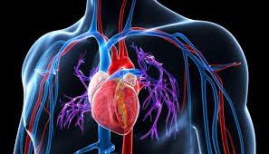 В России одобрен инновационный препарат для лечения легочной артериальной гипертензии