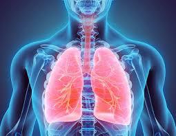В фокусе внимания респираторные заболевания: XXIX Национальный конгресс по болезням органов дыхания