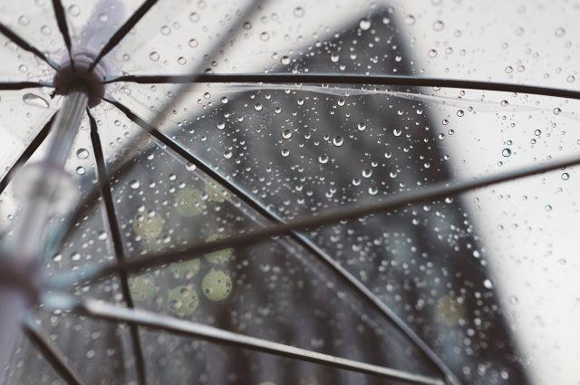 Врач рассказал об опасности аномального тепла в ноябре