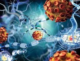 Исследователи рассказали о сложных взаимоотношениях разных вирусов