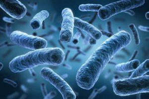 Ученые нашли причину возникновения смертельных суперинфекций