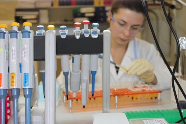 Создана основа для первой вакцины против двух смертельно опасных вирусов