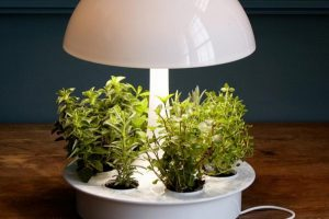 Многофункциональные светильники
