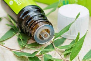 Масло чайного дерева может заменить антибиотики в борьбе с инфекциями