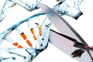 Роспотребнадзор РФ использует технологию CRISPRICAS для борьбы с ВИЧ
