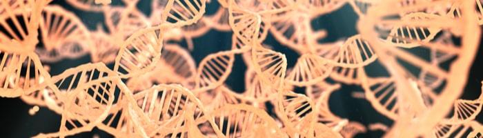 Roche вместе с Blueprint займется созданием генной терапии рака