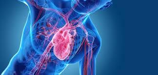 Эмпаглифлозин подтвердил эффективность для пациентов с сердечной недостаточностью, независимо от наличия диабета