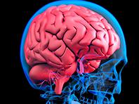 Отечественные неврологи перевернут лечение рака и других тяжелых заболеваний