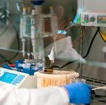 Исследователи смогли максимально быстро избавиться от частиц коронавируса