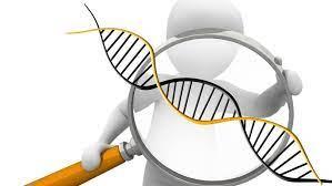 Генетики подсказали эффективный метод борьбы с туберкулезом