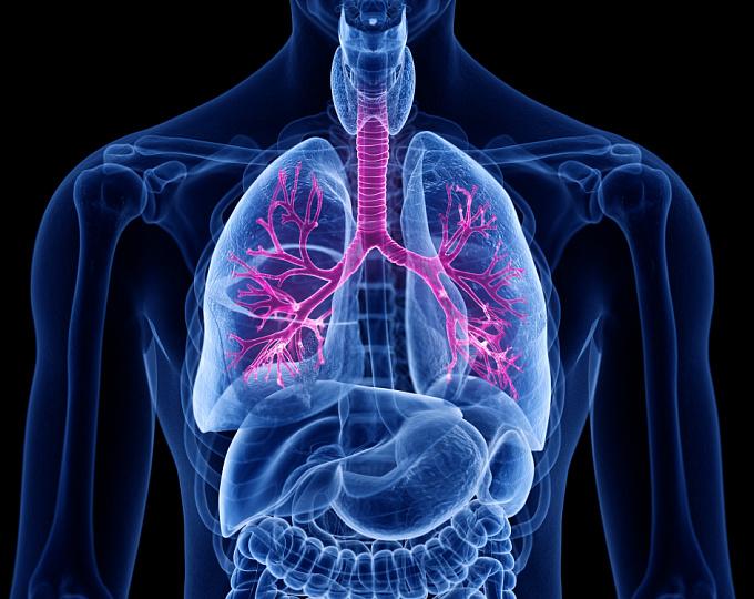 Новые данные подтвердили безопасность и эффективность длительной терапии бенрализумабом пациентов с тяжелой астмой
