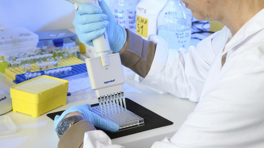Уровень тестостерона у мужчин определяет риск тяжелого COVID-19