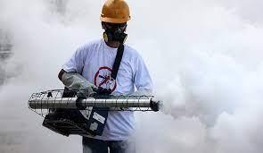 Российских туристов предупредили о вспышке лихорадки во Вьетнаме